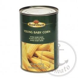 Porumb conservat Young Baby Corn